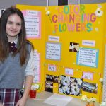 science fair 2019 (10)