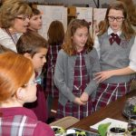 science fair 2019 (37)