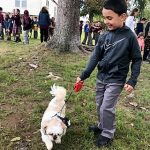 blessing-of-animals-2019 (14)