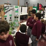 science-fair-2020 (40)